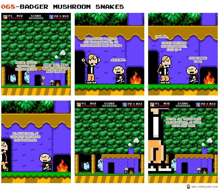 068- Badger mushroom snakes